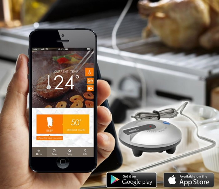 Smartphone BBQ thermometer